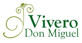 Vivero Don Miguel